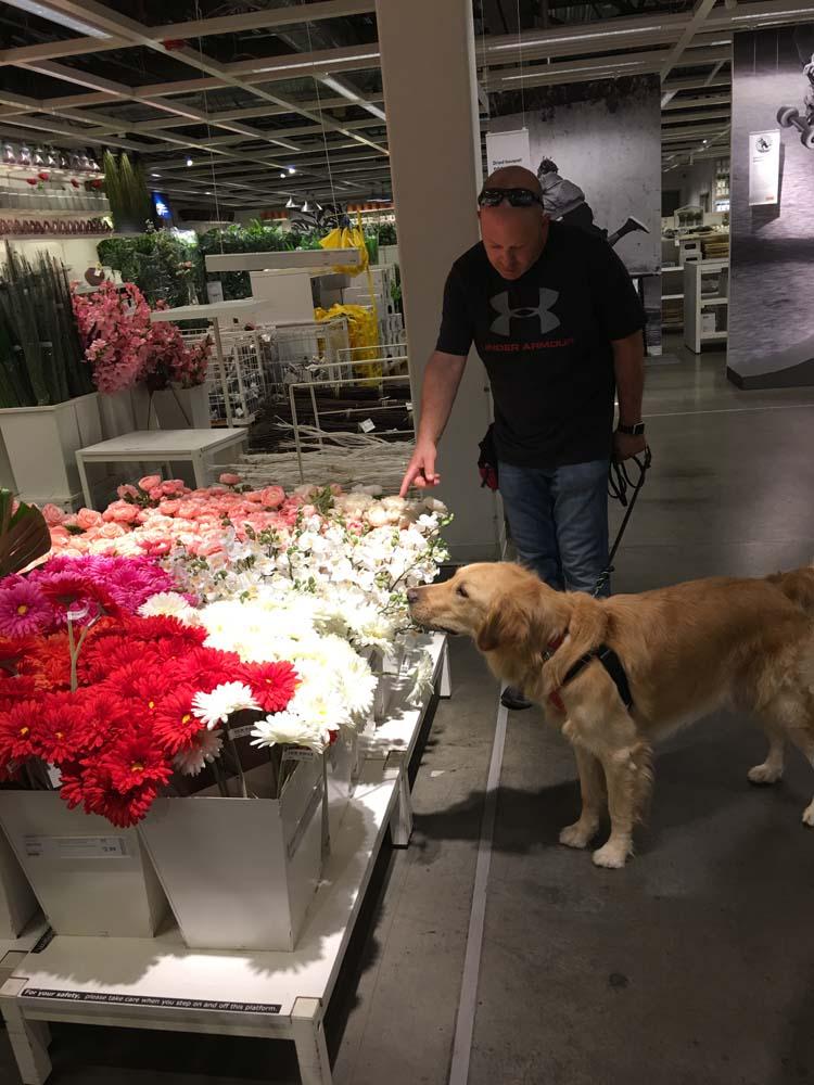 service dog, sonoran dog care, keith geissenberger